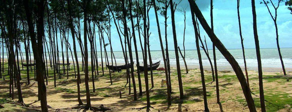 Tajpur Beach, Weekend Destination Tajpur, Tajpur Sea Beach, Hotels in Tajpur, Tajpur Tourism, Tajpur Travel Guide